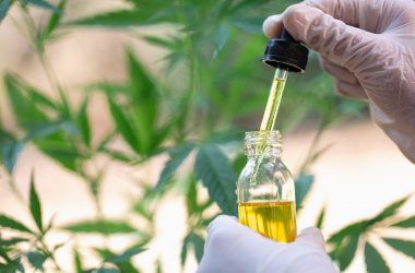 Important Facts One Should Know about the Effects of CBD in Treating Addison's Disease